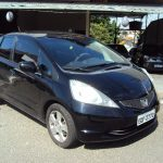 Honda Fit LXL 1.4 flex aut 2009